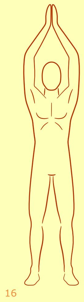 Egyptische Zonnegroet 16